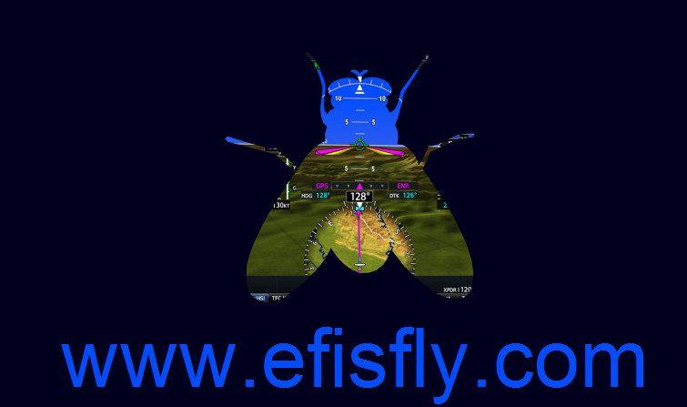 EFIS Fly aircraft simulation Software